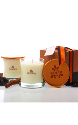 Aromatic Scented Candle