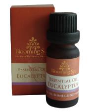 Essential Oil | Eucalyptus Essential Oil