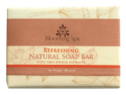 Natural Soap | Refreshing Natural Soap Bar