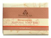 Natural Soap | Refreshing Natural Soap Bar