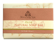 Natural Soap | Olive Natural Soap Bar